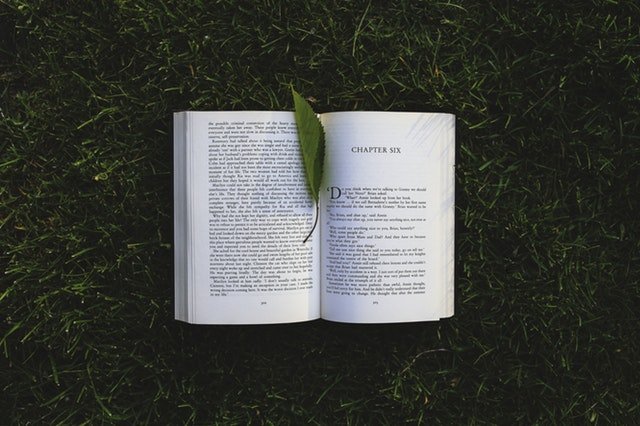 Summer Reading--Book on Grass